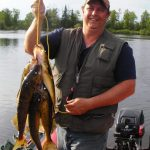 Man posing with a haul of walleye