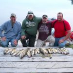 Group of friends posing with haul of walleye