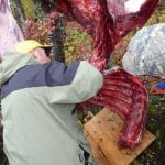 Carving a bull moose