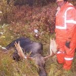 Man posing with his bull moose catch