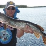 Northern Pike catch