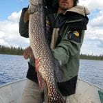 Man holding a pike fish